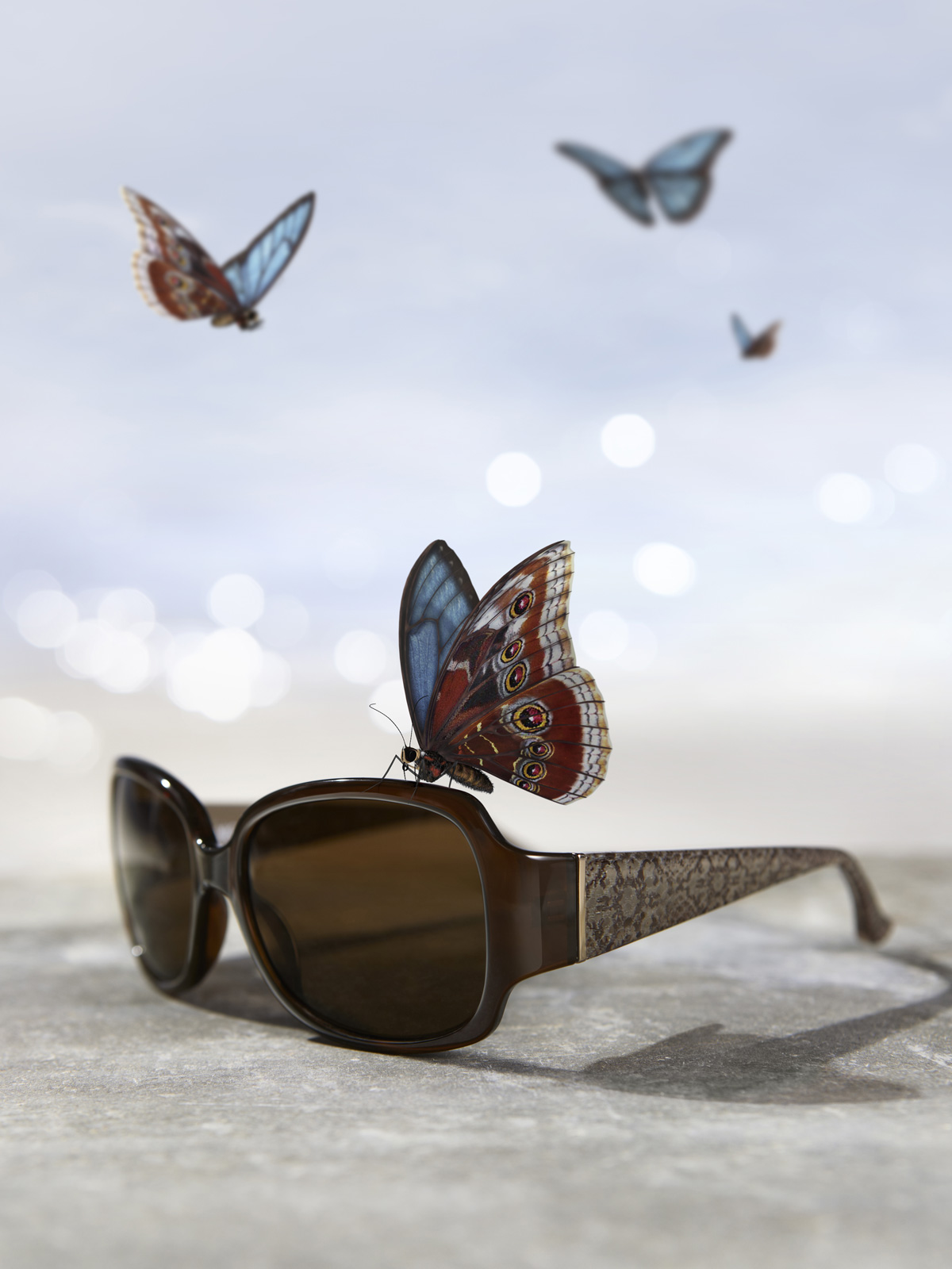 Visique_Butterfly_Tall